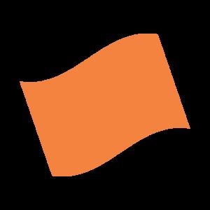 Orange flag infographic